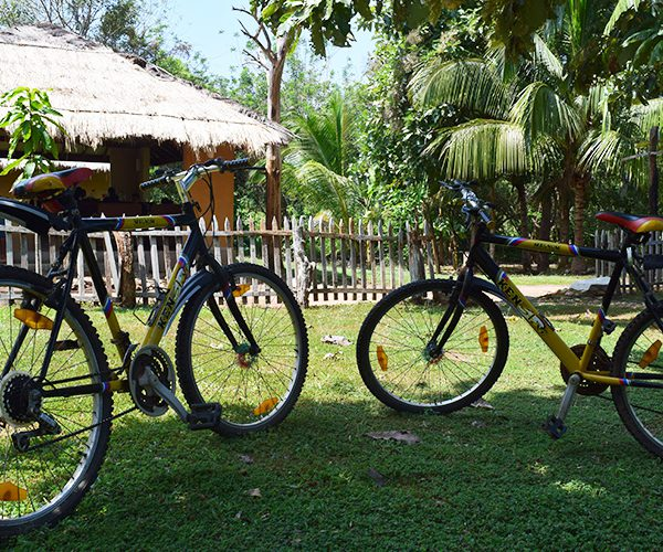 Bicycle Rides